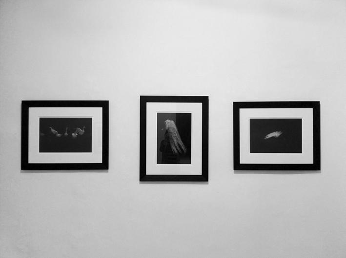 exhibited works
